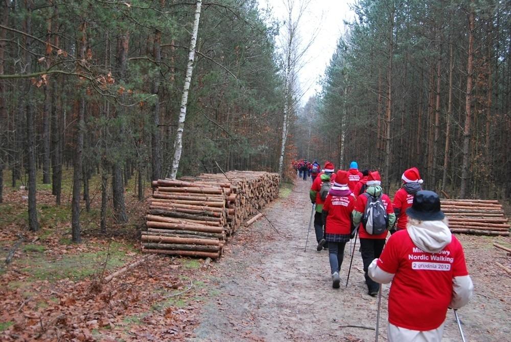Mikołajkowe Nordic Walking