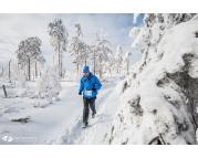 Zimowy Półmaraton Gór Stołowych i 1 Mistrzostwa Polski Alpinistów w Biegu Górskim