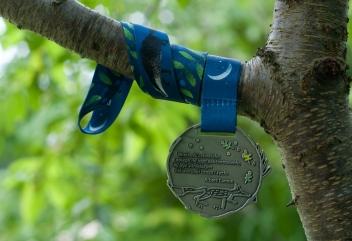 Medal wirtualnej edycji