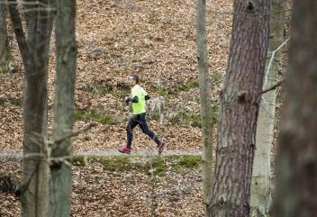 TriCity Trail – bieg ultra i terenowy półmaraton w Trójmiejskim Parku Krajobrazowym!